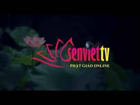 Tin Phật giáo Video SenvietTV 167