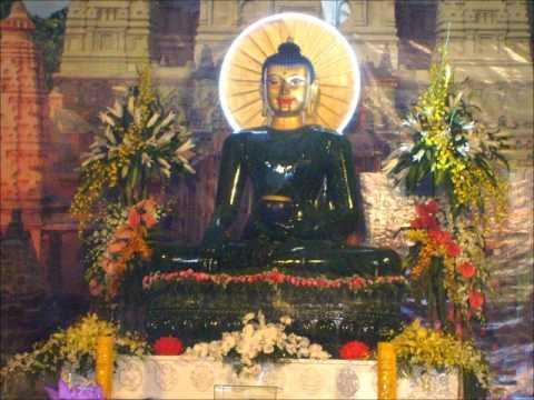 Khái Yếu Về Ngũ Giới (Trích Từ Phật Học Tinh Yếu)