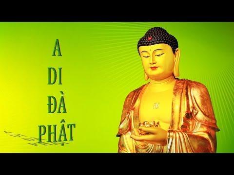 Hỏi Đáp 18: Vì Sao Chỉ Niệm A Di Đà Phật 09.08.2015