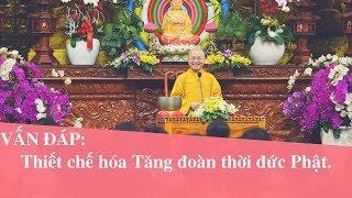 Vấn đáp: Thiết chế hóa Tăng đoàn thời đức Phật | Thích Nhật Từ
