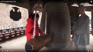 Trải nghiệm một ngày tinh khôi trong ngôi chùa cổ Hàn Quốc nổi tiếng