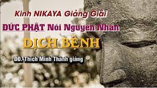 Kinh NIKAYA Giảng Giải – Đức Phật Nói Nguyên Nhân Dịch Bệnh