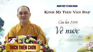 Kinh Mi Tiên: Câu 199 - Về nước - Thích Thiện Chơn