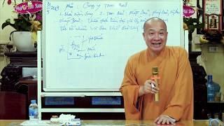Nguồn gốc Phiền não và Vô Minh || Thầy Thích Trí Huệ