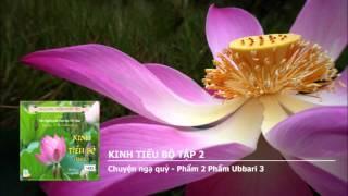 Kinh Tiểu Bộ tập 2 - Chuyện thiên cung - Phẩm 1 Lâu đài nữ giới - Chuyện 1 - 7