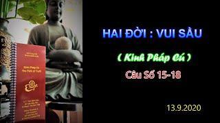 Hai Đời : Vui Sầu (Kinh PC 15-18) Thầy Thích Pháp Hòa Tv.Trúc Lâm.Ngày 13.9.2020
