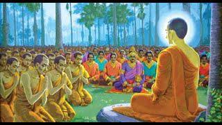 Đề tài: Từ lũ lụt miền Trung suy nghiệm lời Phật dạy - ĐĐ. Thích Quảng Tịnh