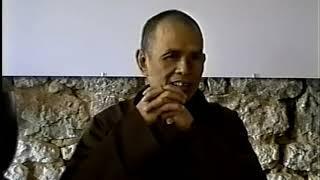Chuyển Hoá Gốc Rễ Của Tâm [Phật Pháp Căn Bản 49] | TS Thích Nhất Hạnh(05-06-1994, Làng Mai)