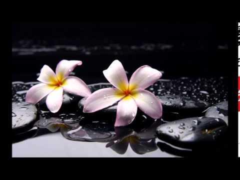 Thiền trong đời sống - Vô tác và Tạo tác