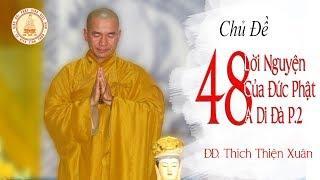 48 lời Nguyện của Đức Phật A Di Đà P.2 - ĐĐ. Thích Thiện Xuân