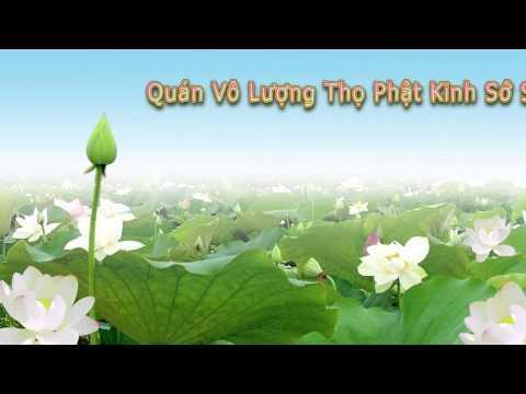 Quán Vô Lượng Thọ Phật Kinh Sớ Sao Diễn Nghĩa (28 Tập Và Còn Tiếp)