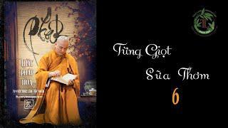 Từng Giọt Sữa Thơm 6 -Thầy Thích Pháp Hòa (Tv Trúc Lâm, Ngày 20.4.2020)