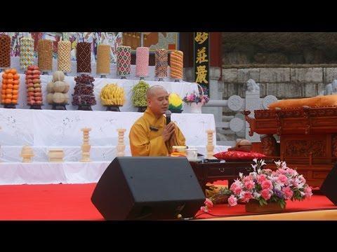 """Biểu Tướng  """"RÂU"""" Bát Tự Trên Tượng Phật  (Yongin HQ, Apr.10, 2016)"""