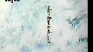 Kinh Vô Lượng Thọ (12-37) Pháp Sư Tịnh Không