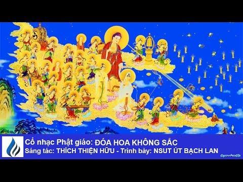 Cổ nhạc Phật giáo: ĐÓA HOA KHÔNG SẮC (karaoke)