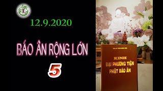 Báo Ân Rộng Lớn 5 - Thầy Thích Pháp Hòa (Tv Trúc Lâm, Ngày 12.9.2020)