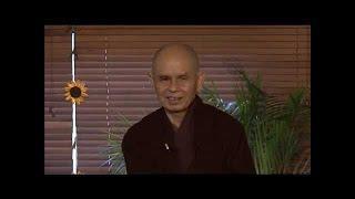 Du Già Sư Địa Luận 10 [bài kệ 29 & 33]- TS Thích Nhất Hạnh (08-01-2012, Xóm Mới, Làng Mai)