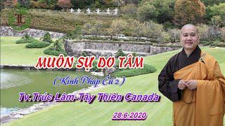 Muôn Sự Do Tâm - Thầy Thích Pháp Hòa (Tv.Trúc Lâm.Ngày 28.6.2020)