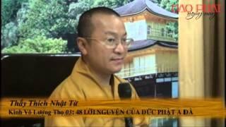 Kinh Vô Lượng Thọ 03:  48 Lời Nguyện Của Đức Phật A Di Đà (11/11/2012) video do Thích Nhật Từ giảng