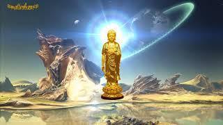 Nhạc Niệm Nam Mô A Di Đà Phật (Hình Động)