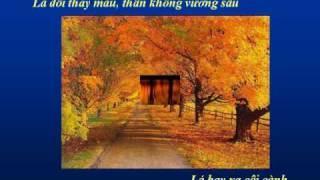 LƯU CHUYỂN - Nhạc Võ Tá Hân - Thơ Thích Tịnh Từ