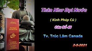 Thân Như Bọt Nước - Thầy Thích Pháp Hòa (Tv.Trúc Lâm.Ngày 2.5.2021)