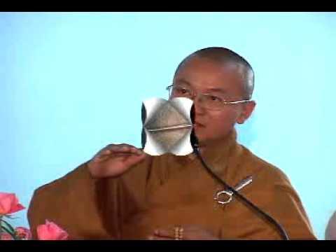 Giá Trị Quán Tưởng Trong Niệm Phật - Phần 2/2 (11/12/2008) video do Thích Nhật Từ giảng