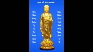 Những Lợi Ích Và Công Đức Của Sự Niệm Phật (Trích Đoạn)
