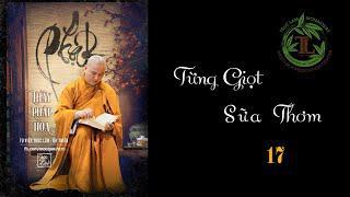 Từng Giọt Sữa Thơm 17 - Thầy Thích Pháp Hòa (Tv Trúc Lâm, Ngày 6.5.2020)