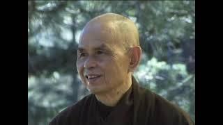 Người Phật tử chân chính (Chùa Từ Vân)