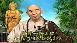 Tứ Hoằng Thệ Nguyện (Trích Từ Kinh Vô Lượng Thọ Tập 65)
