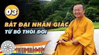 Bát Đại Nhân Giác 03: Từ bỏ thói đời (20/06/2010) video do Thích Nhật Từ giảng