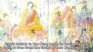 Luận Kinh Vô Lượng Thọ - Bài Kệ Vãng Sanh