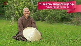 Tu Tập Tâm Theo Lời Phật Dạy