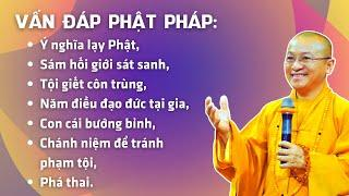 Vấn đáp Phật pháp: Ý nghĩa lạy Phật, Sám hối giới sát sanh, Tội giết côn trùng, Con cái bướng bỉnh,