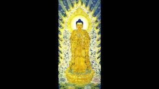 (3-5) Chuyện Niệm Phật Cảm Ứng - Lâm Kháng Trị