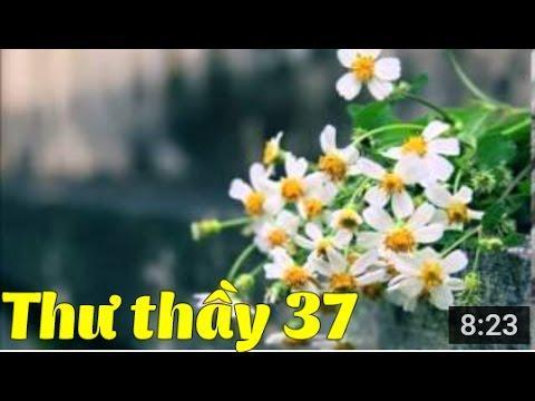 Tuyển Tập Thư Thầy - Thư số 37 - Giá trị của đau khổ