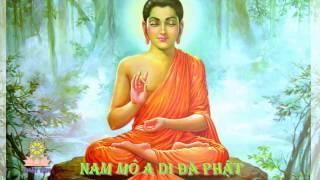 Nam mô A Di Đà Phật 10