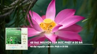 48 Đại Nguyện Của Đức Phật A Di Đà (Bản Việt Văn, Có Chữ) (Rất Hay)