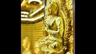 """""""CHẾT, TÁI SANH VÀ HỒI HƯỚNG CÔNG ĐỨC"""" - TT. Nhật Từ thuyết giảng tại chùa Giác Ngộ ngày 9-1-2021."""