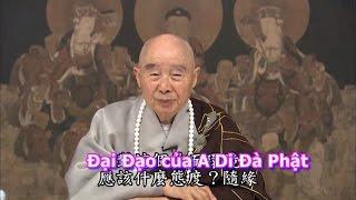 Đại Đạo Của A Di Đà Phật