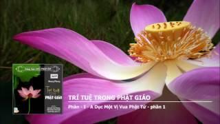 Trí Tuệ Trong Phật Giáo (Tác Giả: Hoang Phong)