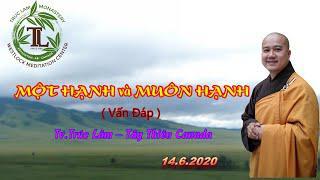 Một Hạnh Và Muôn Hạnh - Thầy Thích Pháp Hòa (Tv.Trúc Lâm.Ngày 14.6.2020)
