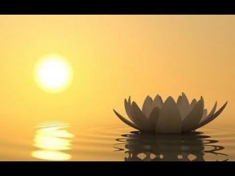 Thiền Tam Muội 03