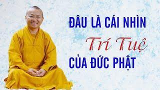 Đâu là cái nhìn trí tuệ như lời Đức Phật dạy - TT. Thích Nhật Từ @Đạo Phật Ngày Nay