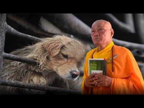 Nghiệp Lực Trong Phật Giáo