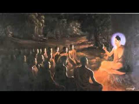 Diễn Đọc: Phật Thuyết Kinh Tứ Thập Nhị Chương