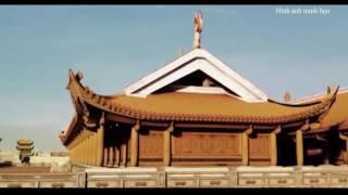 Bí ẩn chùa Dạm