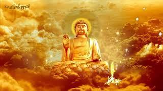 Phổ Nhạc Niệm A Di Đà Phật (Hình Động)