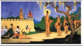 """Tụng """"Kinh A Di Đà Diễn Kệ"""""""